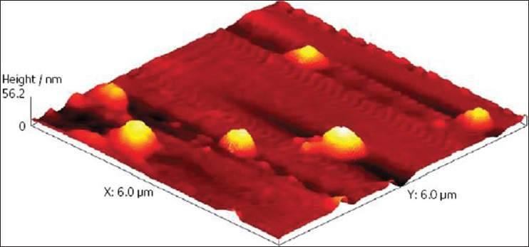Figure 2: Atomic force microscopy image on a Nanonics Multiview 1000