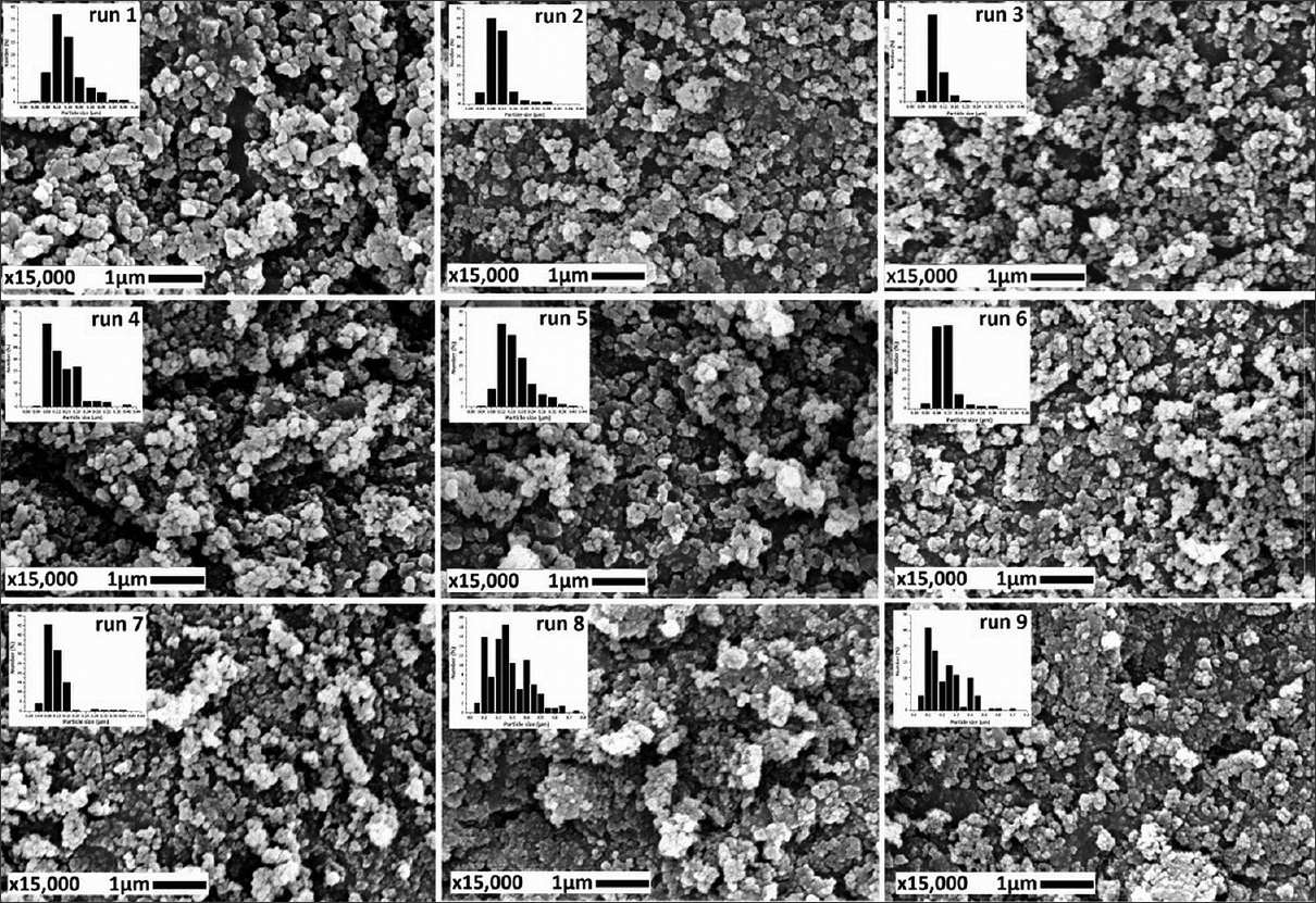 Figure 4: Scanning electron microscope images of supercritical antisolvent-processed DLBS3233 particles (curves of particle size distribution are shown in the corner)