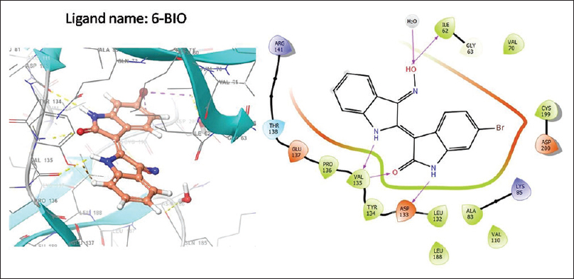 Figure 3: The diagram of docking and ligand protein interaction of the test ligand 6-BIO